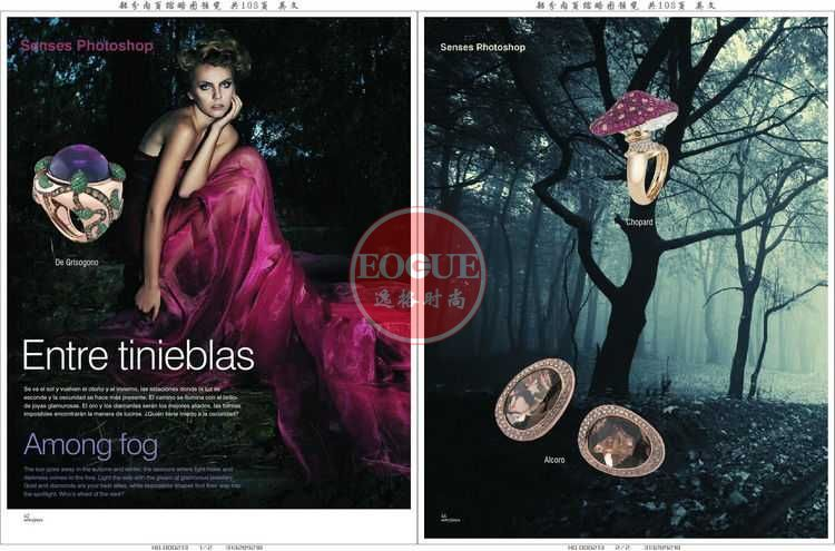 AYJ 德国专业珠宝饰品设计杂志 1月号N195